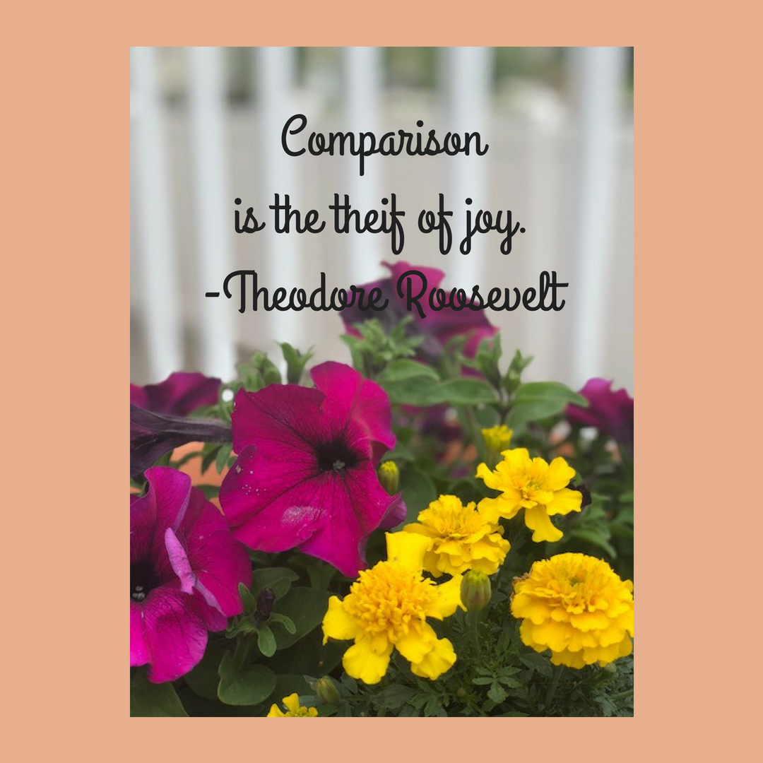 Comparison is the theif of joy.--Theodore Roosevelt1